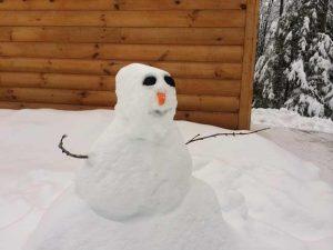snowman outside a cabin