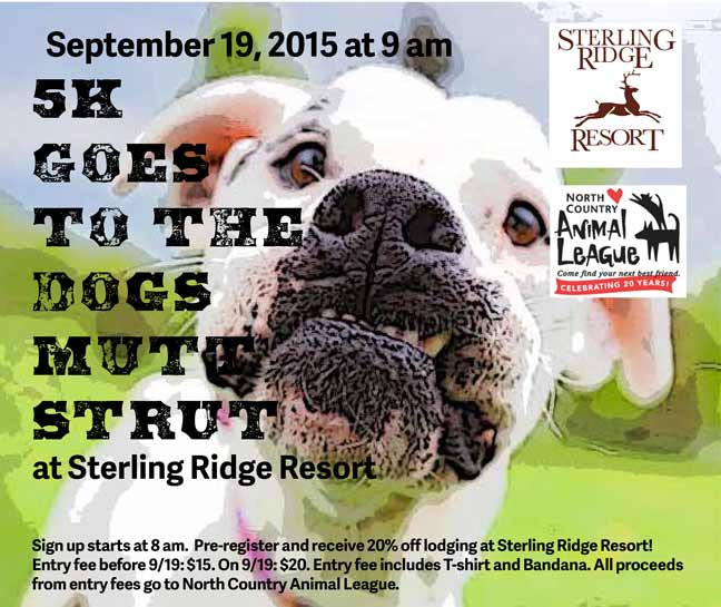 Sterling Ridge Log Cabins goes to the dogs
