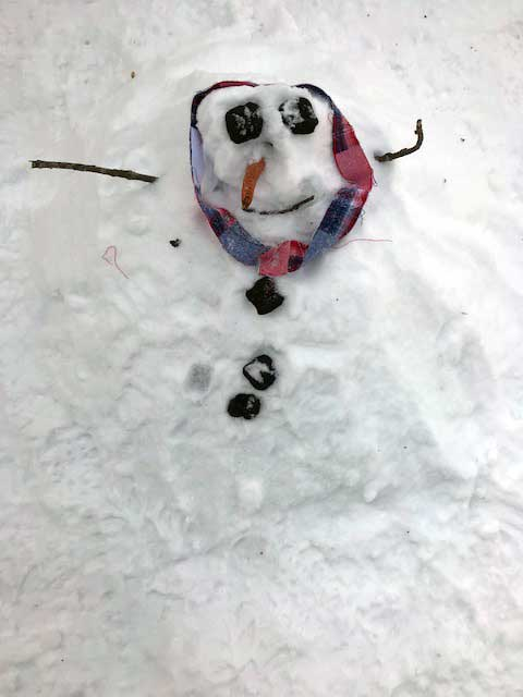 Make winter 2018 memories with a snowman